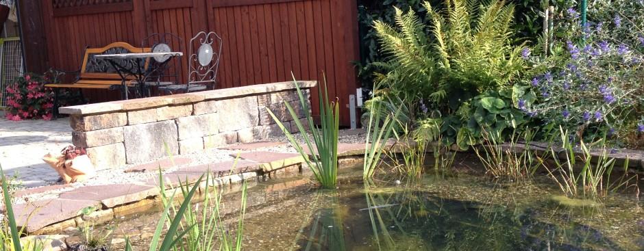 Teichanlagen - in allen Formen